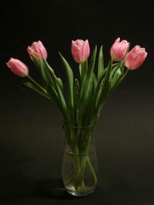 tulipany w bukiecie